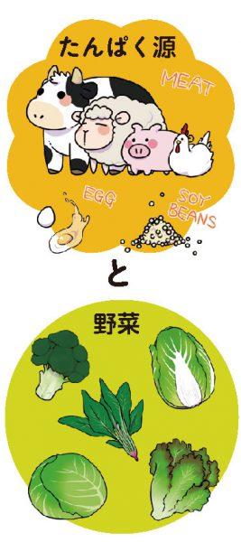 たんばく源と野菜