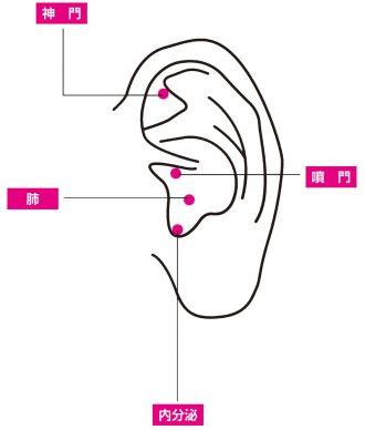 """耳にある""""4つのつぼ""""の位置と効果"""