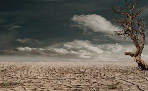 今さら聞けない地球温暖化の原因と影響