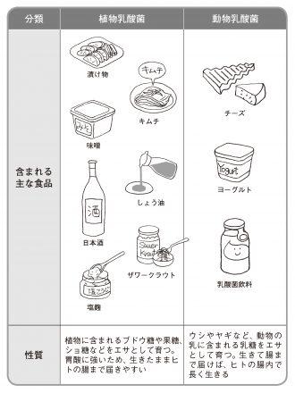 いろんな食べ物に乳酸菌は含まれている